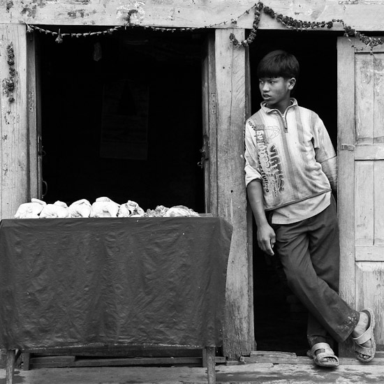 kid with chicken, sankhu